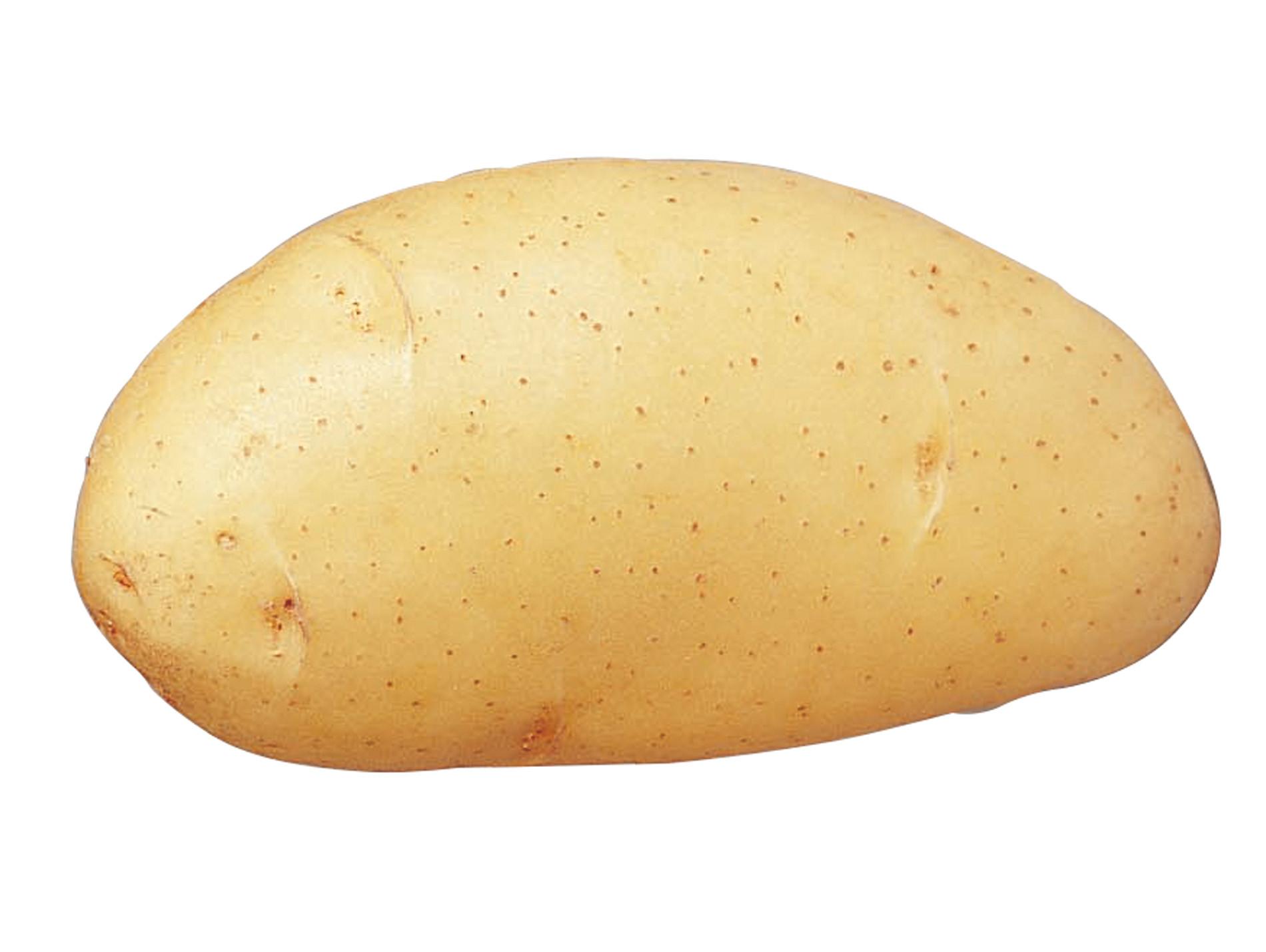 Plants de pommes de terre Spunta 35/45 5kg