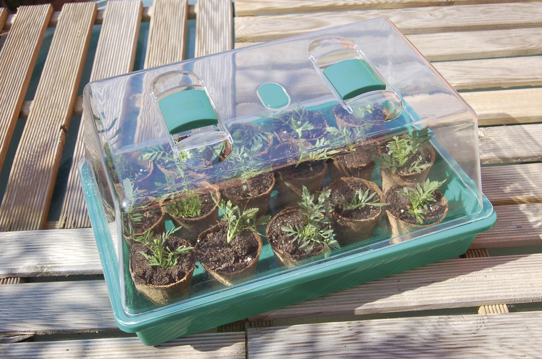 Mini serre pour semis Rapid Grow - Accessoires de culture ...