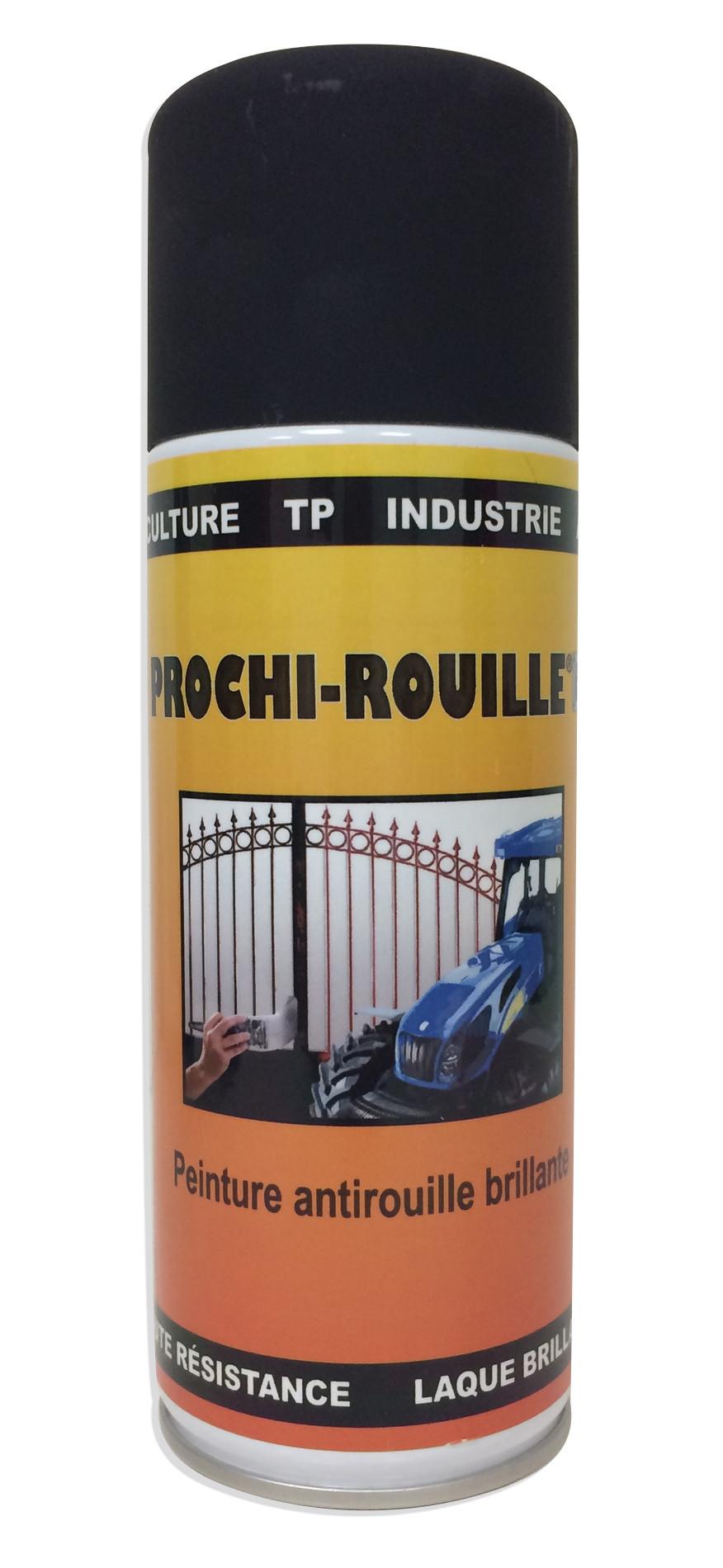 Peinture Laque Noir Mat prochirouille 400ml noir mat 1101