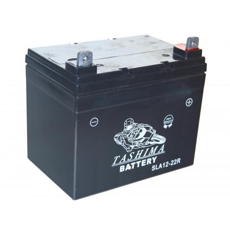 Batterie 12V 22Ah NH1222R + à droite