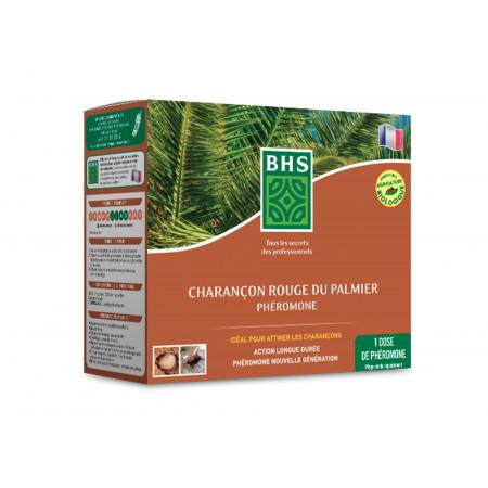 Recharge phéromones Charançon du palmier BHS