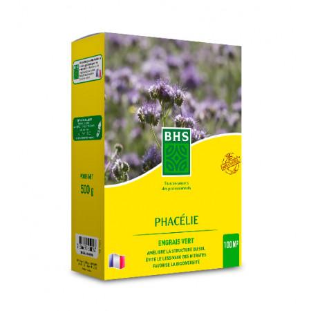 Semences phacélie 500g