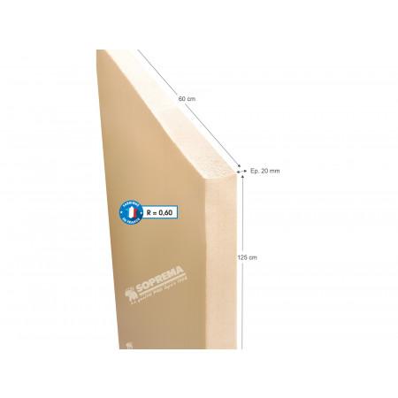 Panneau polystyrène extrudé BD 125x60cm EP2 R=0.6