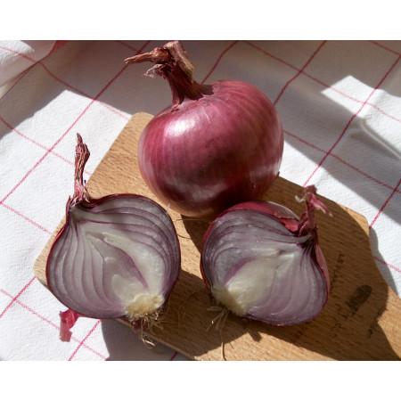 Bulbes d'oignon rouge Karmen 25kg