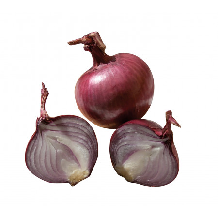 Bulbes potagers Oignon rouge Karmen 250g