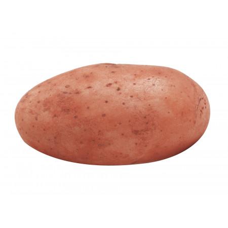 Plants de pommes de terre Alouette 28/35 1,5kg +500g OFFERTS