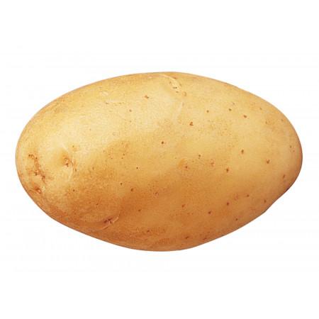 Plants de pommes de terre Monalisa 35/45 5kg