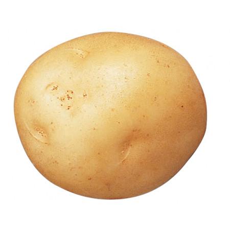 Plants de pommes de terre Sirtema 40/45 3kg