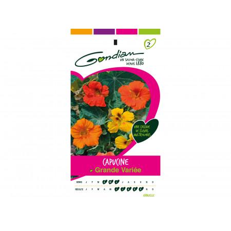 Graines de Capucine Grande Variée Multicolore