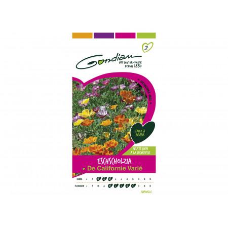 Graines de Eschscholtzia de Californie varié à fleur simple