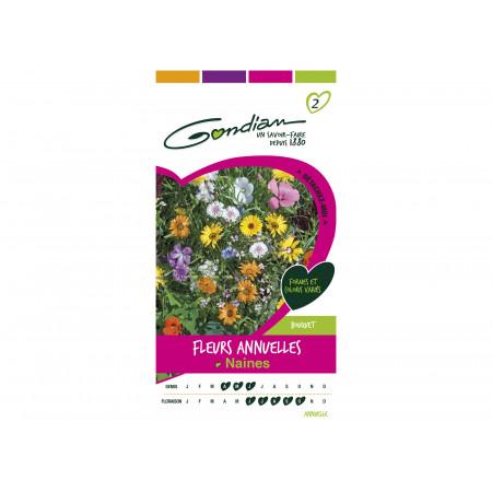 Graines de fleurs annuelles naines