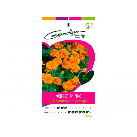 Graines de oeillet d'inde double nain orange 1g