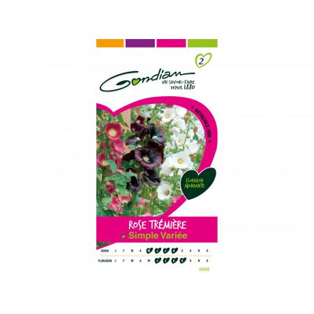 Graines de rose trémière simple varie 1g