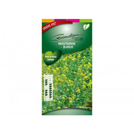 Semences engrais vert Moutarde blanche 100g