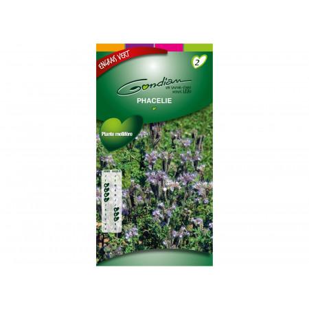 Semences engrais vert Phacélie 120g