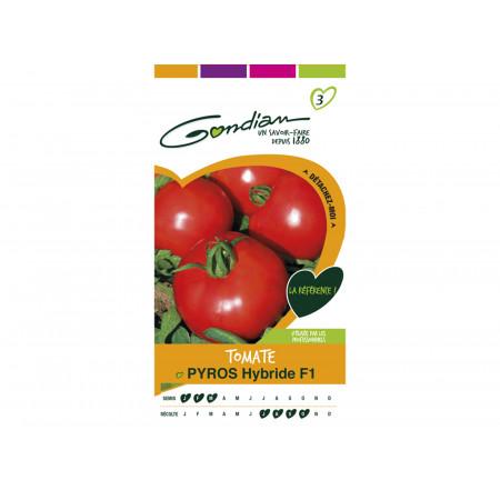 Semences tomate Pyros hf1