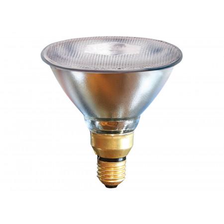 Lampe infrarouge économique 175W transparent