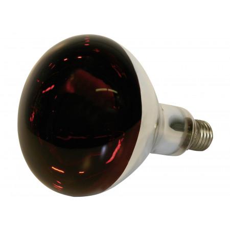 Lampe infrarouge en verre trempé 155W