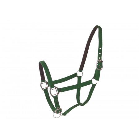 Licol cheval en cuir vert