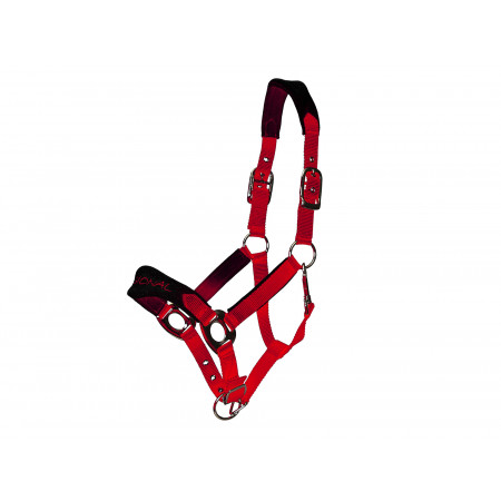 Licol confort double poney rouge/noir