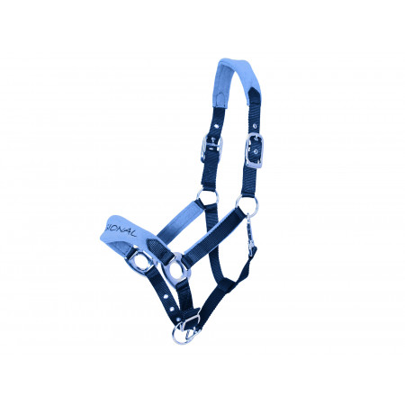 Licol confort double poney navy/ciel