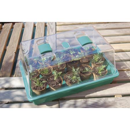 Mini serre pour semis Rapid Grow