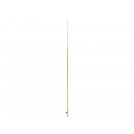Tuteur bambou naturel 2,10m x1 NORTENE