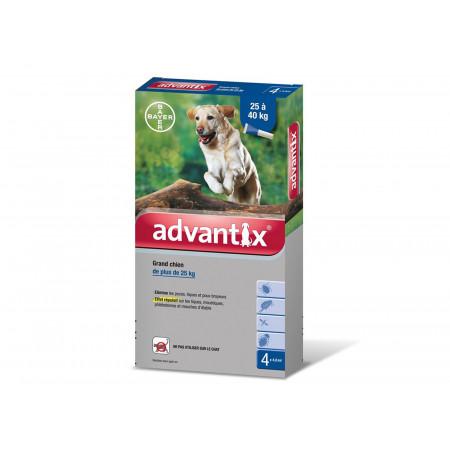 Pipette antiparasitaire chien ADVANTIX 25 à 40kg x4