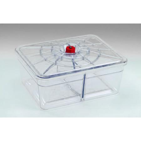 Plat rectangle 2 compartiments 20x25 REBER