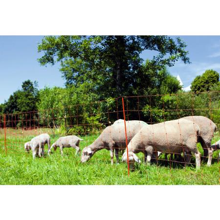 Filet à moutons 50m Ovinet
