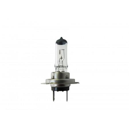 Lampe économique H7 12V 55W