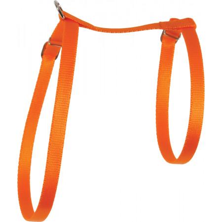 Harnais pour chat en nylon orange
