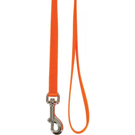 Laisse nylon pour chat orange