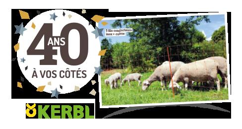 Filet à moutons 50 m Ovinet